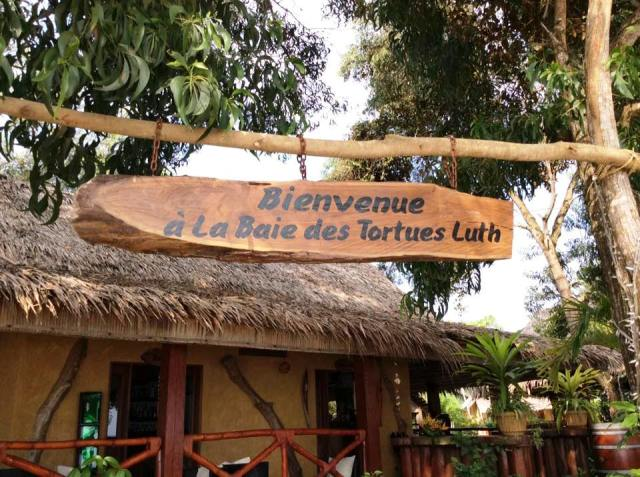 Baie des tortues Luth