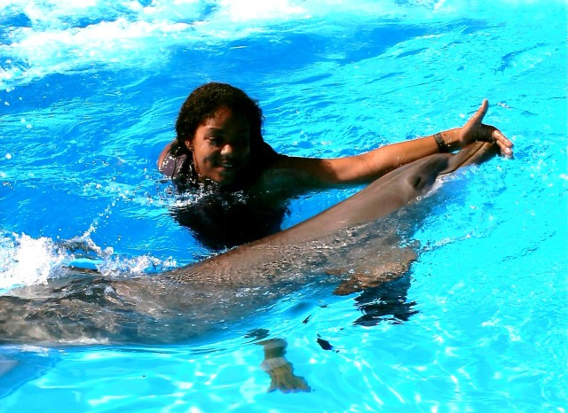 swim_dolphin_malta