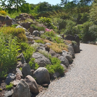 jardin-botanique-copenhague (3)