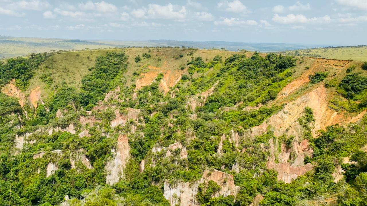 canyon leconi femelle gabon